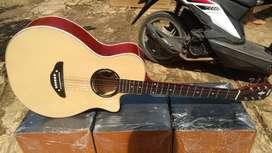 Gitar akustik Yamaha apx custom