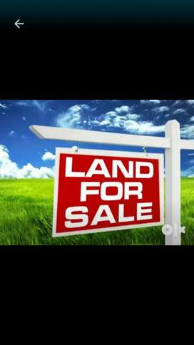 1 KOTHA12 LESA PLOT LAND FOR SALE