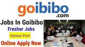 Golbiobo process walkin interview for FRESHERS/Experienced in NCR