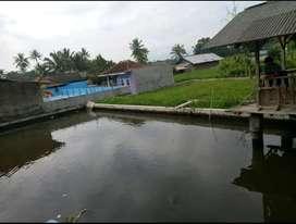Jual cepat tanah sawah kolam ikan balong sumedang