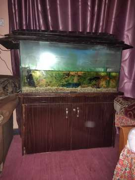 fish aquariums in standard size in 8mm glass