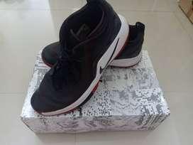 Dijual Sepatu basket  Kondisi lengkap dan Original Type LEBRON WHITNES
