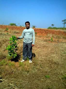 53365 square feet agricultural plot at just Rs. 6,00,000/-.