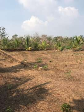 Land sale at permude