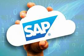 Sap END- END Implementation Real-Time Training