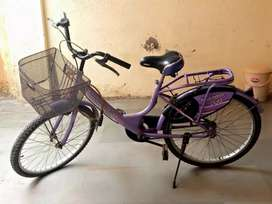 Ledybird cycle,room heaters,single bad