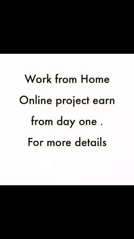 WORK FROM HOME ONLINE PROJECT EARNING