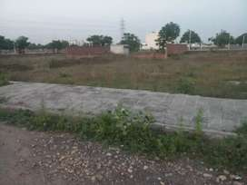 commercial showrooms/ plots available at 66 ft road