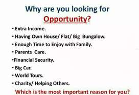 Give 2-3 hours daily and earn extra money.