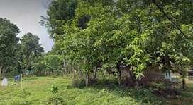 Jual tanah murah - Tanpa Perantara-