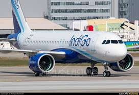 INDIGO AIRLINE HIRING IS SO MANY VACANCY!!  Indigo Airlines Invite All