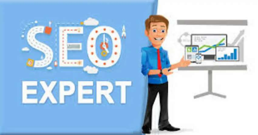 SEO Expert Female Required. 0
