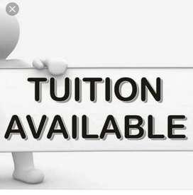 Tution teacher Class 1 to Class 8(All subject)