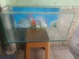 Aquarium 602525 + pH resun 8watt murmer