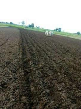 Agricultural land,best and fruitful land,produce maxm foods,grain  etc