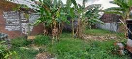 Tanah murah siap Bagun perum kehakiman babat jerawat sby brt