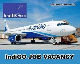 Indigo Airlines Job Opened @ CCE , Cabin Crew, Luggage Dept. , Front D