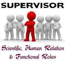 Field Supervisor