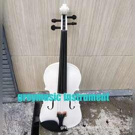 Violin greymusic seri 1003