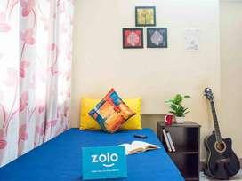 Zolo Nova 1 2 Sharing Sharing Pg for Men