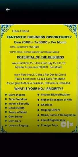 Entrepreneurship (work from home)