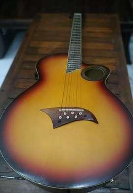 Guitar Acoustic Electric Gillmore GA-02 Original