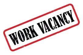 Work vacancies in vizga
