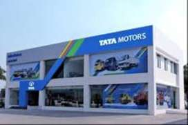 tata motors required 6 candidates , for sales & other profiles
