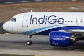 Indigo Airline Security Guard & Ground Staff Job In varanasiairport