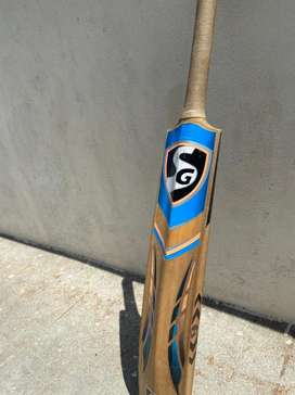 Sg kashmir willow cricket bat
