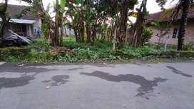 Tanah Murah di Utara Masjid Suciati Sleman. SHM Pekarangan
