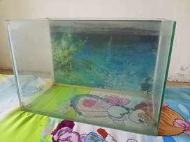 #Fish# #aquarium#