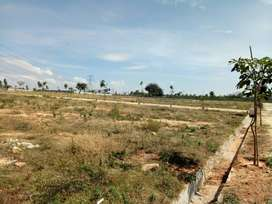 Plots for Sale in Prime Location at Hyderabad