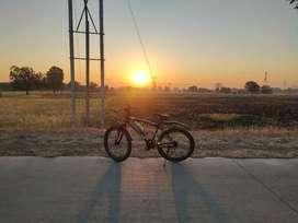 Momstar Cycle