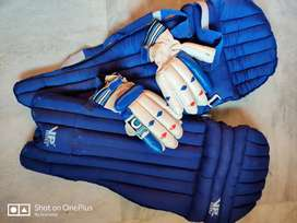 Cricket pad and gloves