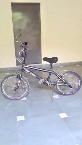 """Raleigh bicycle 20""""@4500"""