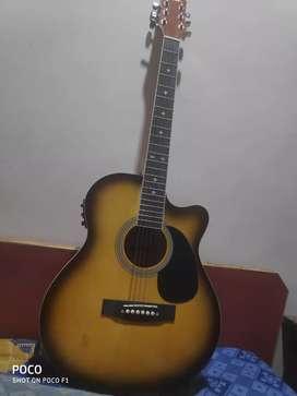 Hertz acoustic guitar