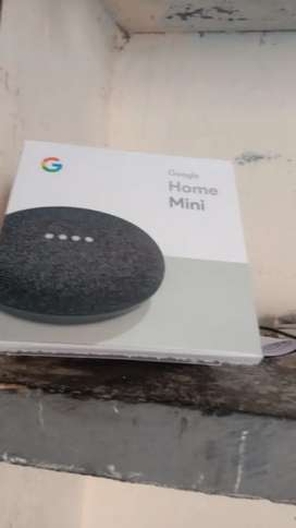 Google Home Mini Sealpack