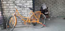 Bicycle at a Low Price