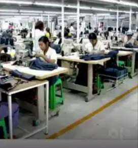 Ladies Tailors(Bra manufacturing company)desiners