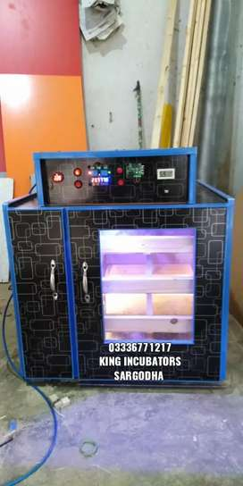 Incubator, hatchery, ando se choza wali machine, hatchery, small eggs,