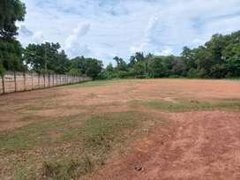 Tanah Sukarela disewakan/dikerjasamakan milik PT.Pusri