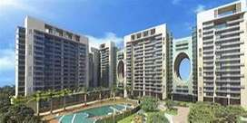 NEWLY LAUNCH LUXURY APARTMENT ON AIRPORT ROAD, MOHALI
