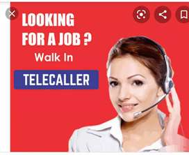 Telecaller required for us based calling