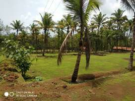 8000 sq-m plot with 150 sq-m constructed shed available for rent