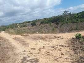 tanah murah  payola umbu