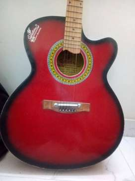Signature guitar with bag and 2 plectrum