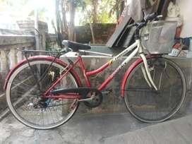 Sepeda wanita Phonix