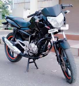 Bajaj Pulsar 135 Ls 2014 Mdl,  Show room condition Jalandhar no.