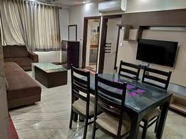 , 3 bhk fully furnished flat in Bani Park